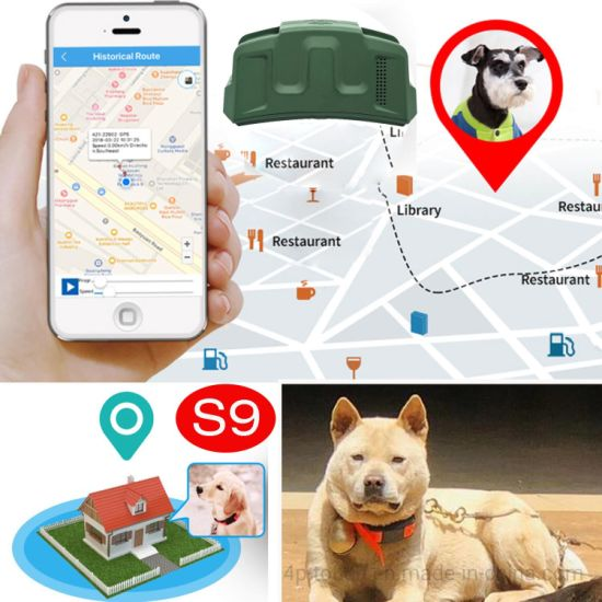 Factory Supplier IP67 Waterproof Dog Cat 2G Smart Pets Tracking Device GPS Tracker with Free APP S9