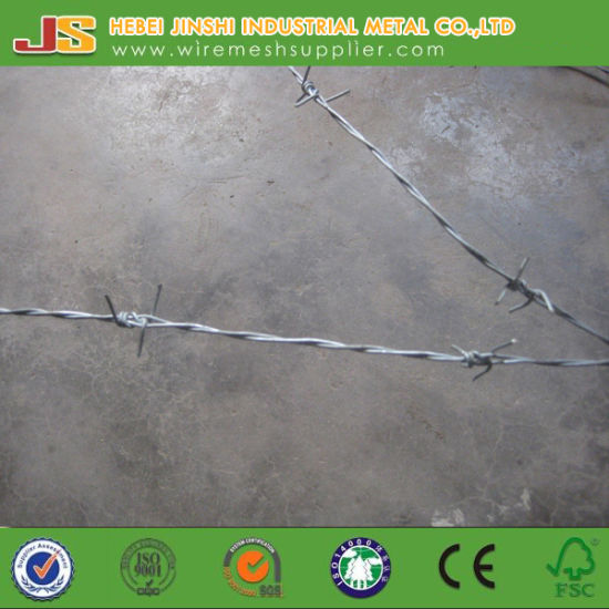 Normal Twist Galvanized Barbed Wire pictures & photos