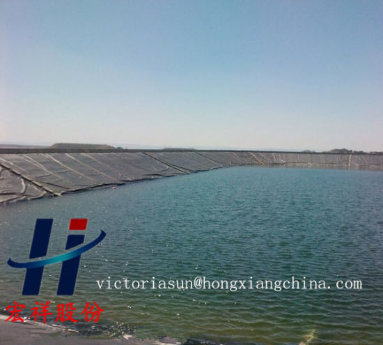 Lanfill Waterproofing HDPE Geomembrane pictures & photos