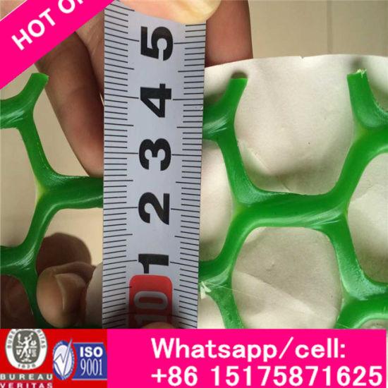 China Fine Mesh Sheet Plastic, Plastic Chicken Wire Mesh, Green ...