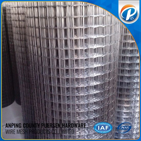 China Hot Dipped Galvanized Welded Wire Mesh, 1/2\