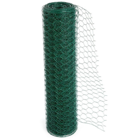 Galvanized Hexagonal Wire Netting Made in China pictures & photos