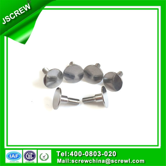 Screw Factory Produce Special Round Flat Head Screw for Roofing pictures & photos