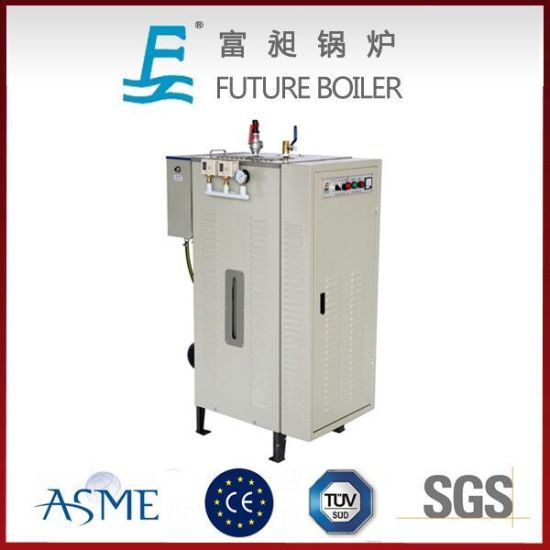 China Compact Electric Steam Boiler for Home Usage - China Steam ...