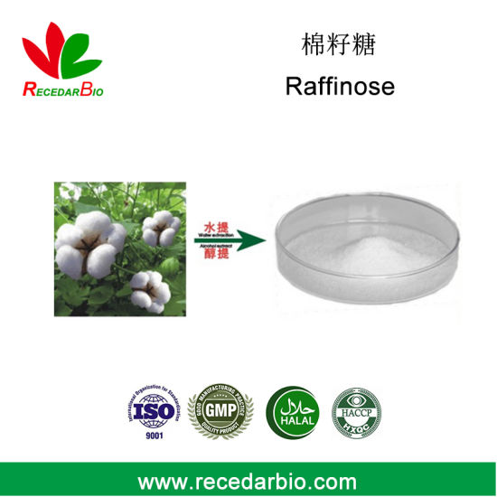 Natural 1%-98% HPLC Raffinose Powder with CAS 512-69-6