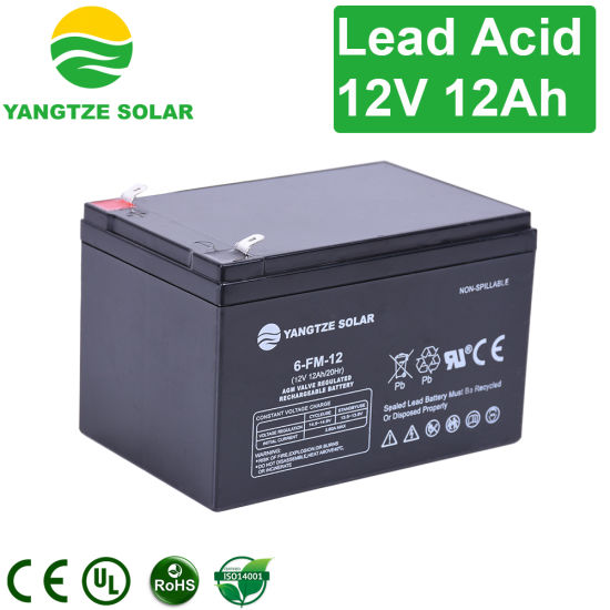 Yangtze 12V Charger for 12V 12ah Rechargeable 12 Ah Battery pictures & photos