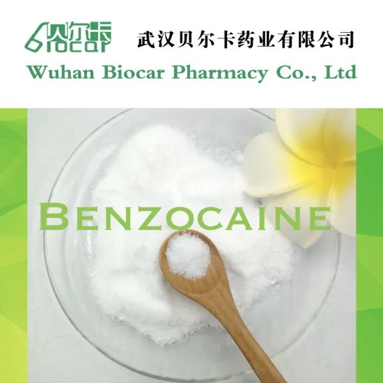 Wholesales Local Anesthetic Powders Benzocaine HCl CAS 23239-88-5 Benzocaine Hydrochloride