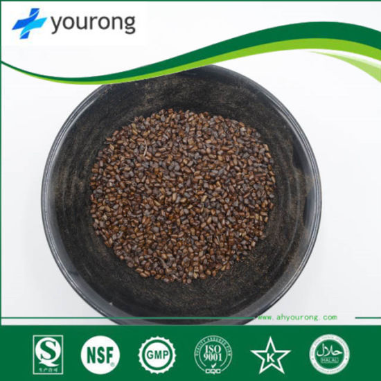 Cassia Seed with a Long History, High Quality Medicial Product