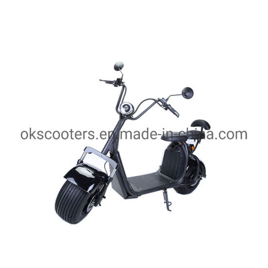 Europe Stock EEC Coc Electric Scooters Electric Motorcycle Citycoco