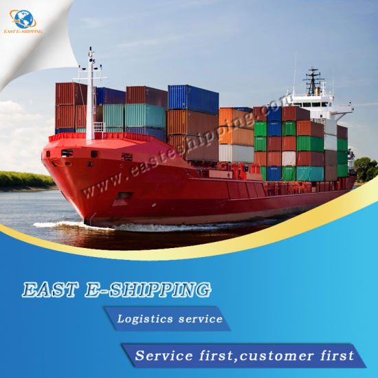 Fast Logistics Sea Freight Ocean Freight Shipping Service From China to India Pakistan pictures & photos
