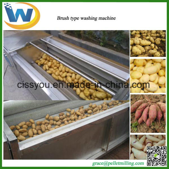 Brush Vegetable Fruit Washing Peeling Processing Machine pictures & photos