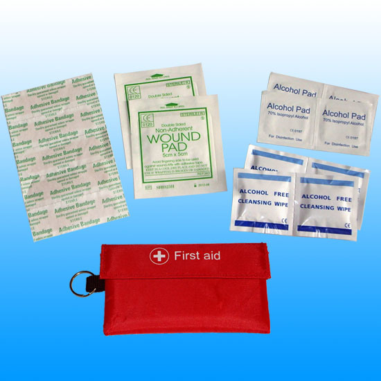 Ce, ISO, FDA Personal Travel Mini First Aid Kit # Kbg-A021