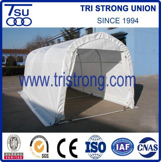 PE/PVC Heavy Duty Portable Car Carport/Garage/Canopy/Shelter