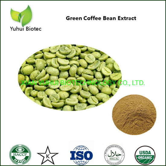 China Coffee Bean Extract Low Price Chlorogenic Acid For Weight