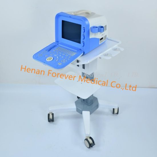 Full Digital Laptop Ultrasound Scanner for Animals or Human Use pictures & photos