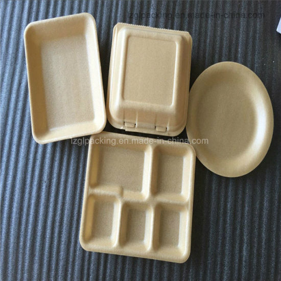 Biodegradable PLA Food Take Away Container for Food Processor