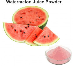 Raw Material Watermelon Fruit Juice Powder for Dairy Products
