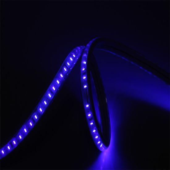Holiday LED Strip Flexible Light 60LEDs/M SMD 2835 LED Tape Light pictures & photos