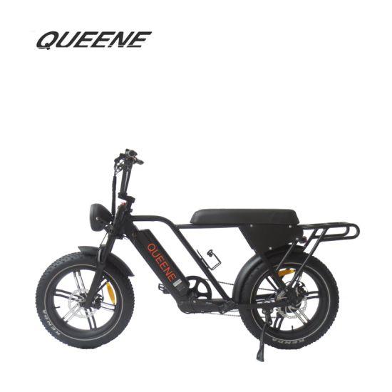 Queene/LCD Display 13ah Lithium Battery 48V 500W Bafang Rear Drive Super Power Ebike Fat Tire Adult Electric Bike