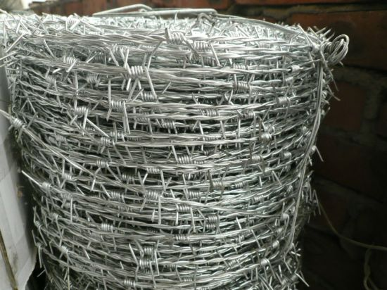 Galvanzied/PVC Coated Low Carbon Steel Barbed Wire for Prison pictures & photos