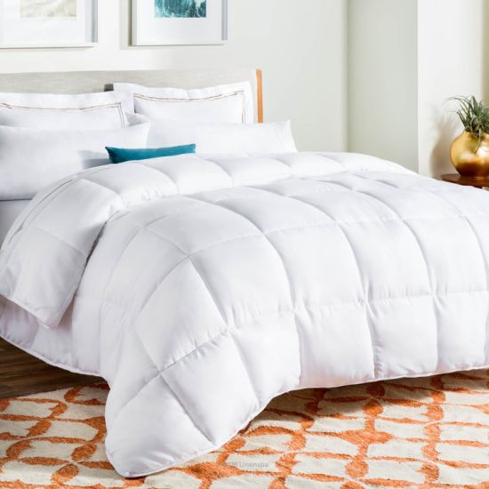 Fashion Warm White Goose Down Duvet pictures & photos