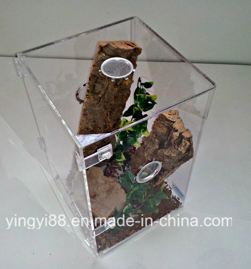 Wholesale Medium Size Acrylic Terrestrial Cage pictures & photos