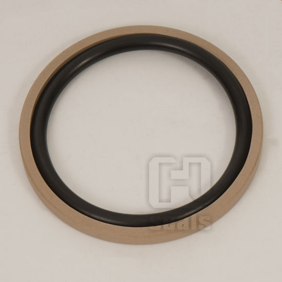 PTFE Piston Glyd Ring Hydraulic Seal, Teflon Ring Seal pictures & photos