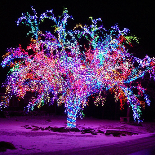 Led Outdoor Tree Light Led String Lights Outdoor For Mall Decoration