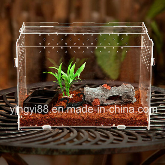 New Acrylic Reptiles Terrarium Habitat Pet Cage pictures & photos