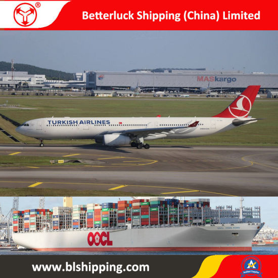 Logistics Service From China to New Zealand Hamilton Shipping Freight pictures & photos