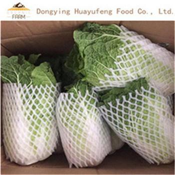 High Quality Bulk Fresh Chinese Cabbage