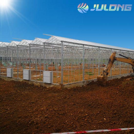 Good Price with High Qulaity Vegetables Greenhouse for Eggplant Tomatoes Cucumber