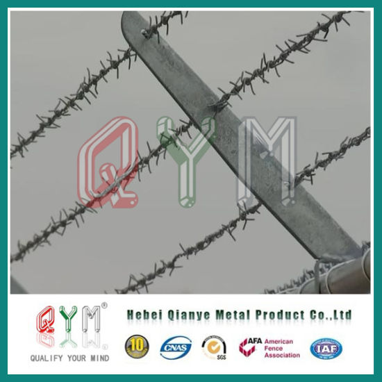 China Hot-Dipped Galvanized Razor Barbed Wire/Barbed Wire Price Pell ...
