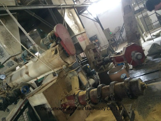 Oil Seeds Extruder pictures & photos