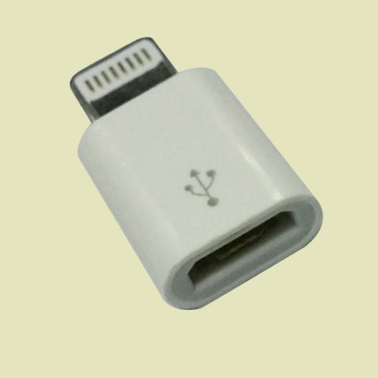 Micro USB to Lightning for iPhone to Micro USB Adaptor pictures & photos