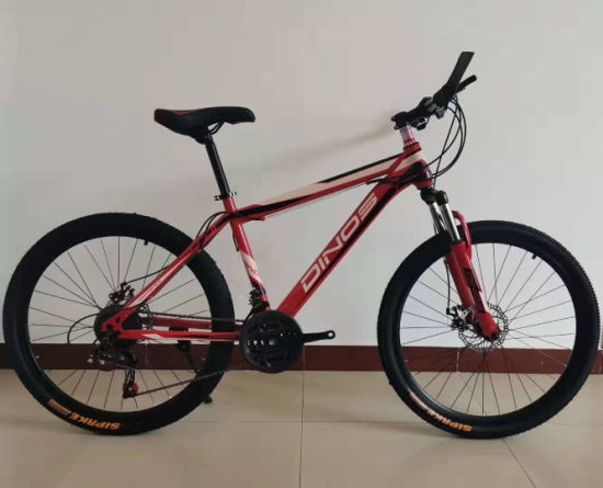 26 Inch 21 Speed Bicycle Full Suspension Steel Mountain Bike