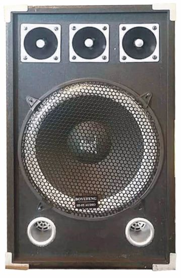 Wholesale Professional Load (Passive) Speaker with High Power (BR12)