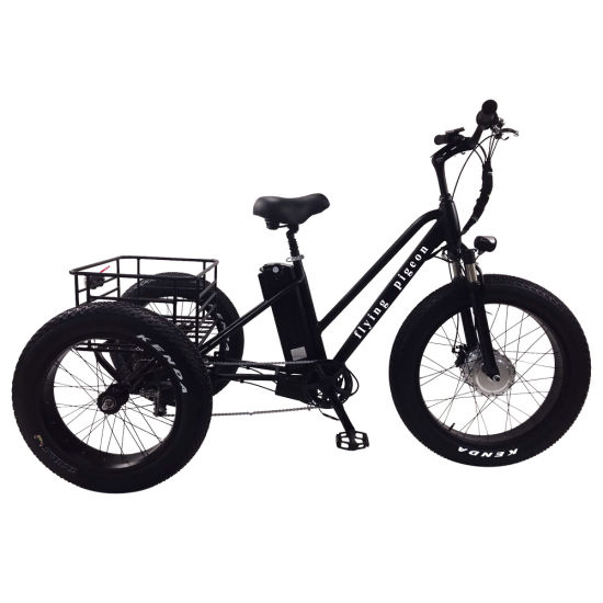 Hot Sale Lithium Battery Electric Tricycle with 4.0 Fat Tire (FP-ETRK1804) pictures & photos