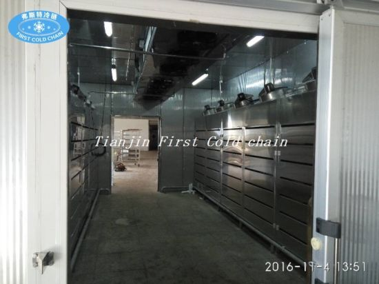 Food Defroster with Low Temperature Thawing Machine pictures & photos