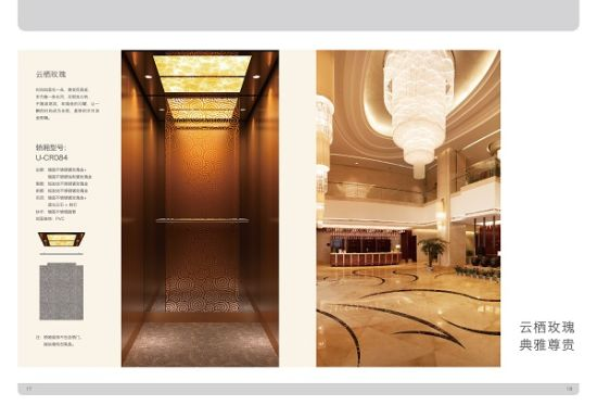 New Style Villa Elevator pictures & photos