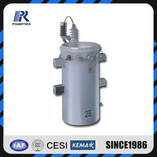 13800V 100 kVA Complete Self Protection Pole Mounted Overhead Csp Distribution Transformer