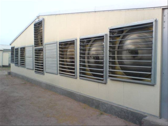 High Quality Prefab Steel Frame Broiler House pictures & photos
