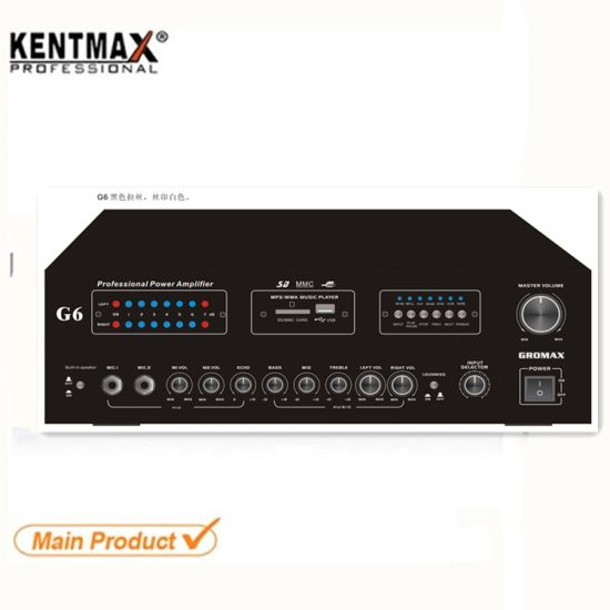 40W Professional Swiftlet Nest Walet Stereo Home Guitar Audio Amplifier 2 Tweeter Speaker
