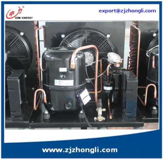 China R22 /R134A/R404A Tecumseh Condensing Unit for Cold
