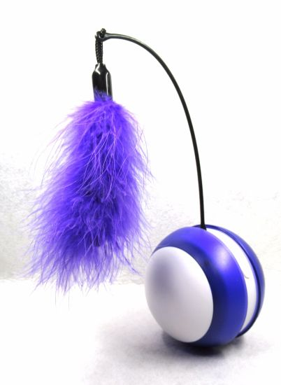 Purple Rolling Bird Sound Flash LED Tumbler Cat Ball Toy