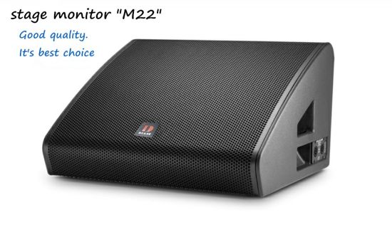 Vtx M22 Dual 12 Inch Professional Stage Monitor Speaker