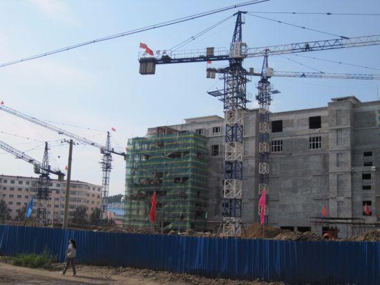 Lifting Equipment Tower Crane Model: Qtz100 (TC6010) -Max. Load: 8t