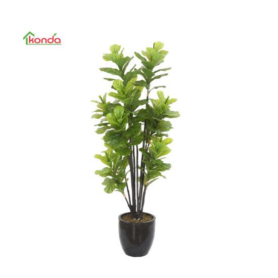 Artificial Evergreen Tree Fruit Plant Nursery Calabash Tree Crescentia Cujete