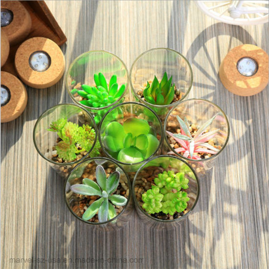 LED PVC Indoor House Decoration Artificial Succulent Plant with LED Light pictures & photos