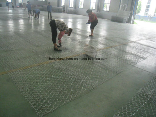 Gabion Wire Mesh PVC Coated with Hot Dipped Gavlanized pictures & photos